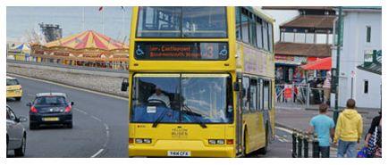 yellow-buses